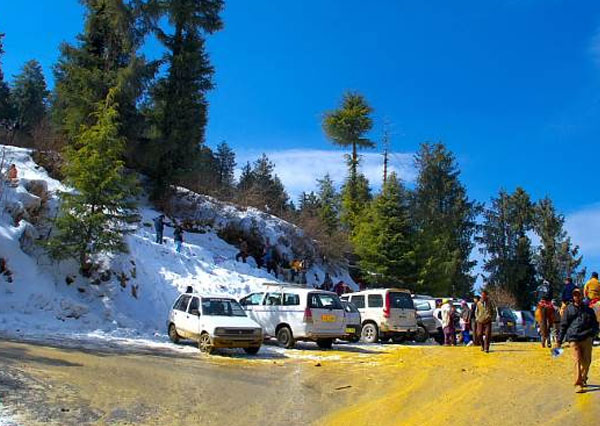 /Manali Local Sightseeing Taxi